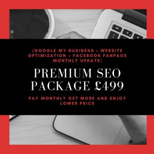 Premium SEO Package £499
