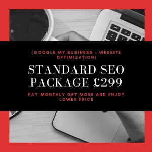Standard SEO Package £299